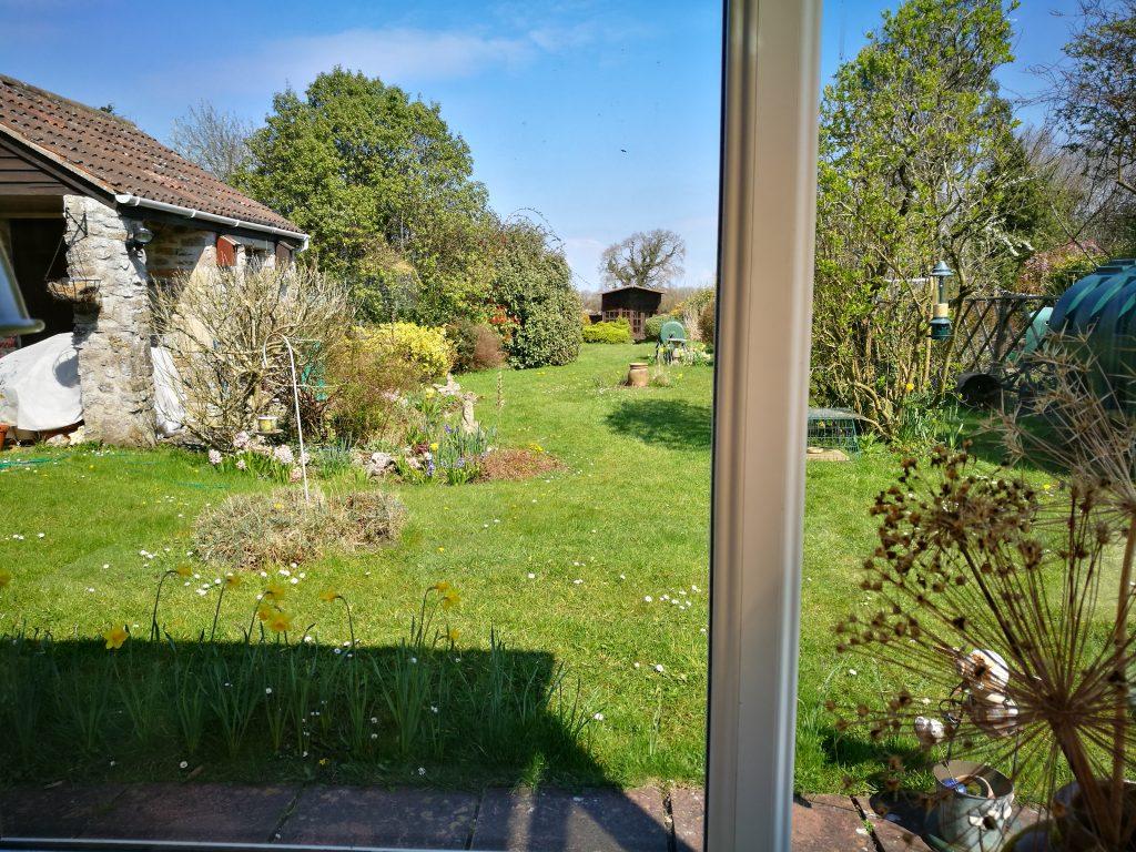 View down the spring garden